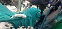 leczenie kamicy nerkowej